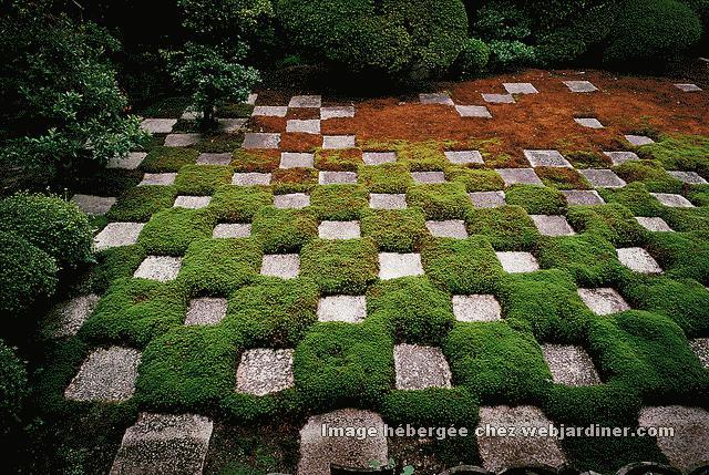 Pelouse de 7 m2 tondre forum du jardinage amateur - The garden web forum ...