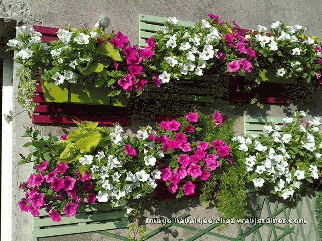 Mur V G Tal Int Rieur Forum Du Jardinage Amateur