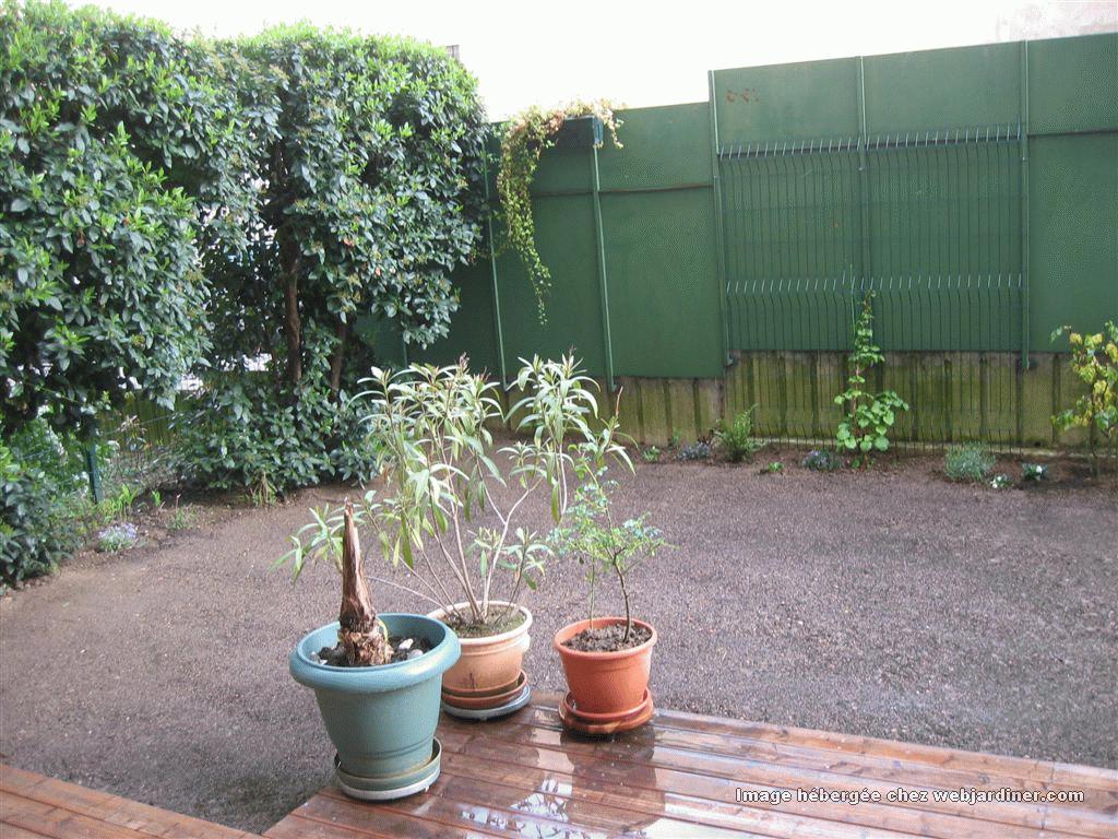 lovely semer gazon sans rouleau 4 pelouse en rouleau rustique nantes. Black Bedroom Furniture Sets. Home Design Ideas