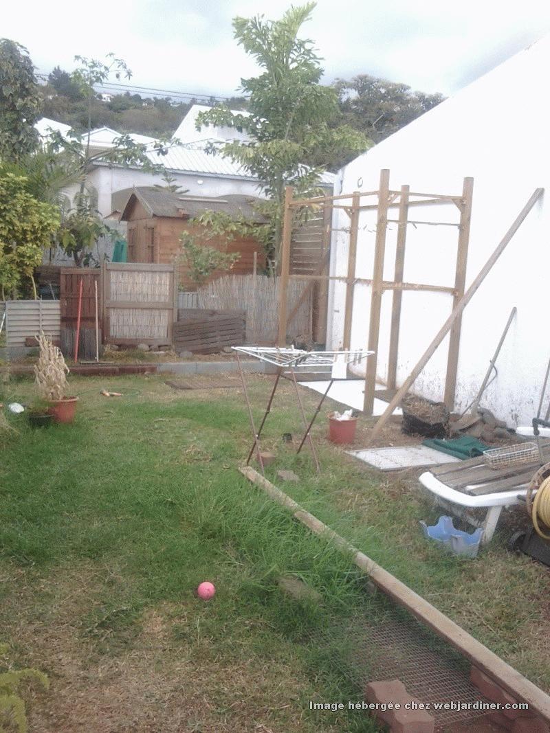 plantes pour bac proche pergola forum du jardinage amateur. Black Bedroom Furniture Sets. Home Design Ideas