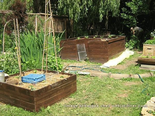Palissage conseils forum du jardinage amateur - Comment planter des concombres ...