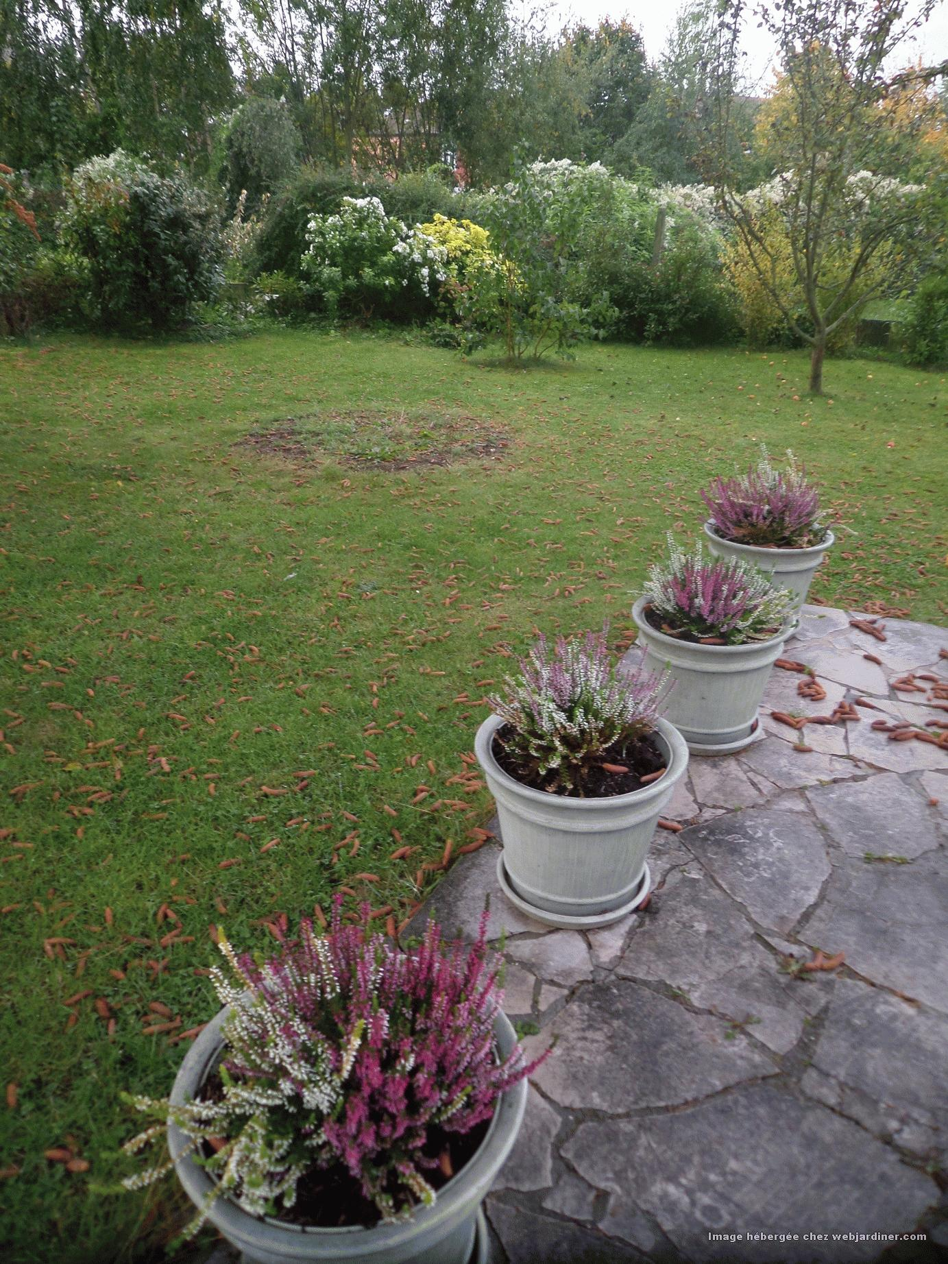 Travaux et r coltes au jardin octobre 2015 forum du for Jardin octobre 2015