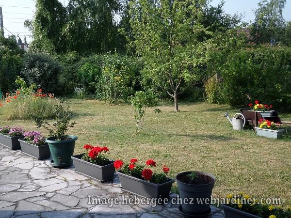 jardinforum21juin001.jpg